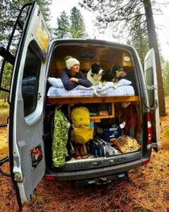 Cómo hacer la vida con un perro en furgoneta